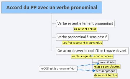 Accord Du Participe Passe D Un Verbe Pronominal Lettres Au College
